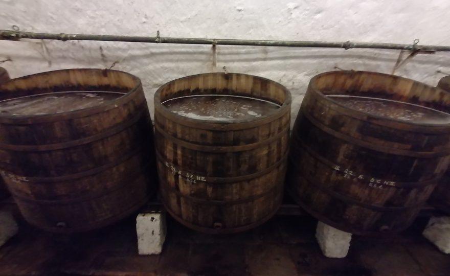 La fermentazione: il mosto si trasforma in birra